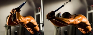 Fitness Drive Tricep Overhead Extension